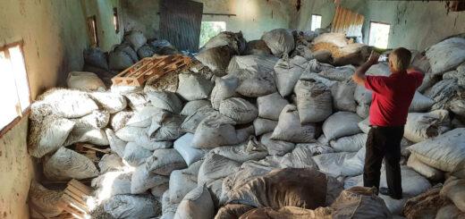 Más palos de yerba intervenidos por el INYM: 230 mil kilos en dos procedimientos
