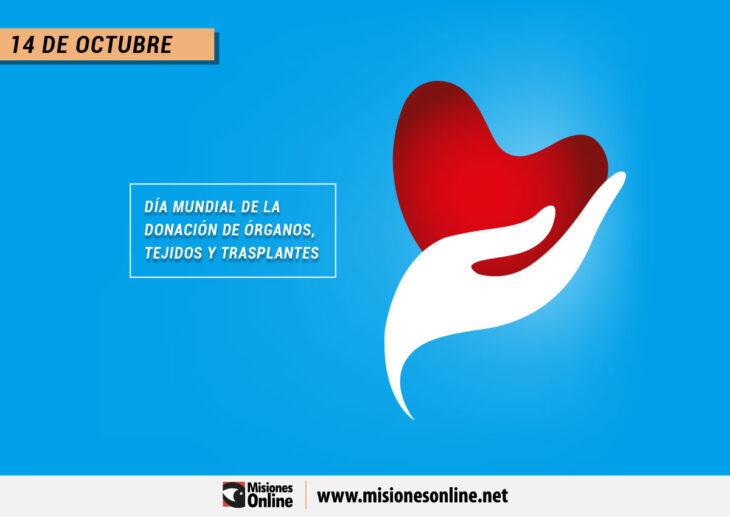 Día Mundial de la Donación de Órganos, Tejidos y Trasplantes: ¿Por qué se celebra cada 14 de octubre?