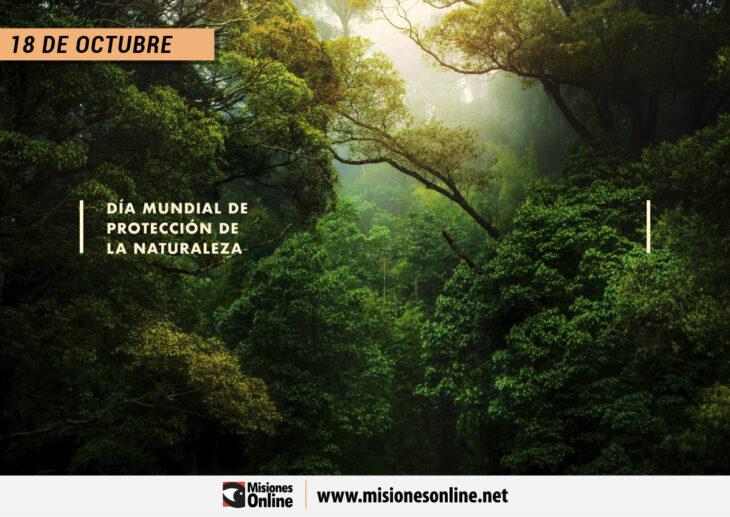 Día Mundial de Protección de la Naturaleza: Conocé qué podés hacer para ayudar al medioambiente