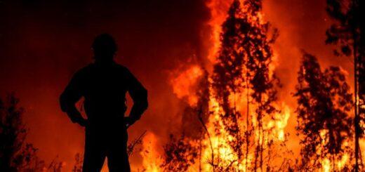 Misiones acompaña el proyecto de ley que busca proteger los ecosistemas de los incendios