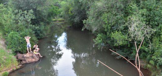 Destacan la importancia de la ley de restauración de bosques protectores de cursos de agua en Misiones aprobada este jueves
