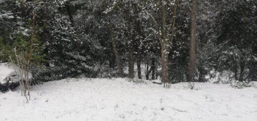 intensa nevada sorprendió a Neuquén y Río Negro