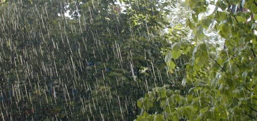 Se esperan lluvias para todo el territorio misionero, pero el alerta por incendios forestales sigue vigente