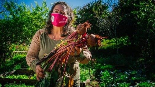 Relevamiento del Ministerio del Agro y la producción de Misiones evidenció poca participación de las mujeres en el rubro