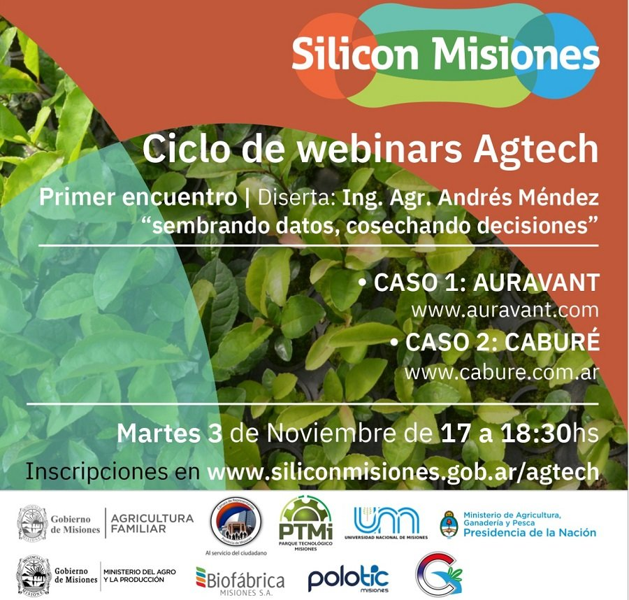 Silicon Misiones