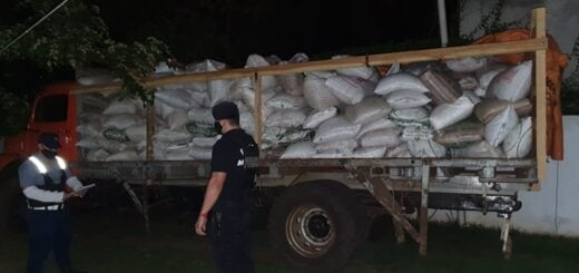 Investigan la existencia de una posible asociación ilícita que se dedica a transportar soja y sacarla del país por Misiones