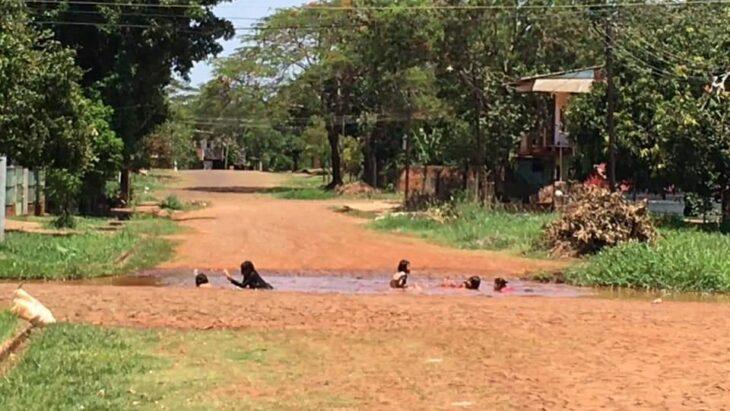 La imagen viral de niños que se bañan en un charco ante el intenso calor en Puerto Iguazú