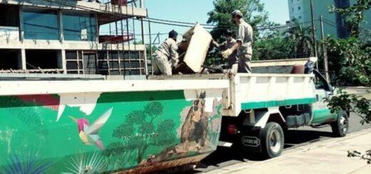 En Posadas recolectaron 294 toneladas de desechos en el marco de la lucha contra el dengue