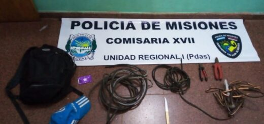 Ingresaron a robar al Instituto Janssen en Posadas: hay un detenido