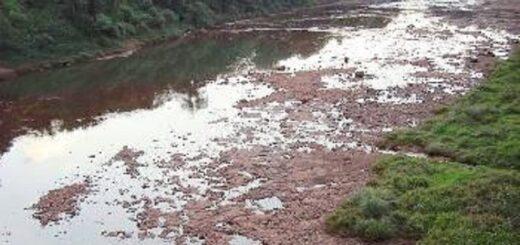 El Instituto Nacional Del Agua y el Servicio Meteorológico Nacional tratarán mañana el crítico escenario de sequías en el NEA