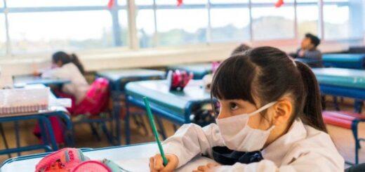 Señalan que por ahora no volverán las clases presenciales a Misiones y adelantan que en 2021 se implementará un sistema mixto en las escuelas