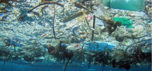 Por año arrojan al Mediterráneo 229.000 toneladas de plástico