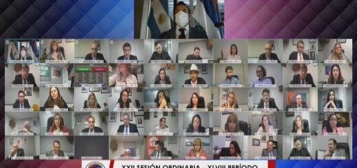Legislatura Misionera: en plena pandemia y con 22 sesiones íntegramente virtuales, los diputados sancionaron 87 leyes durante 2020