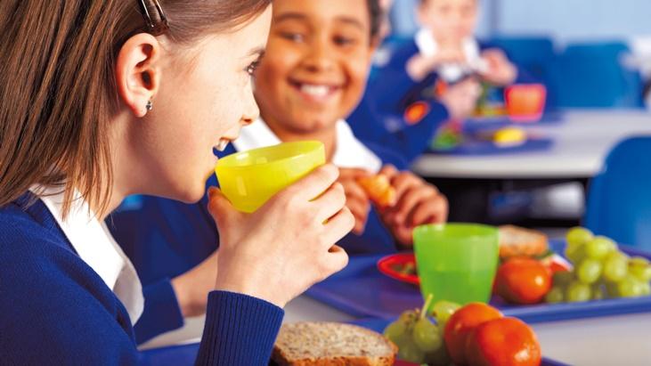 educacion alimentaria nutricional