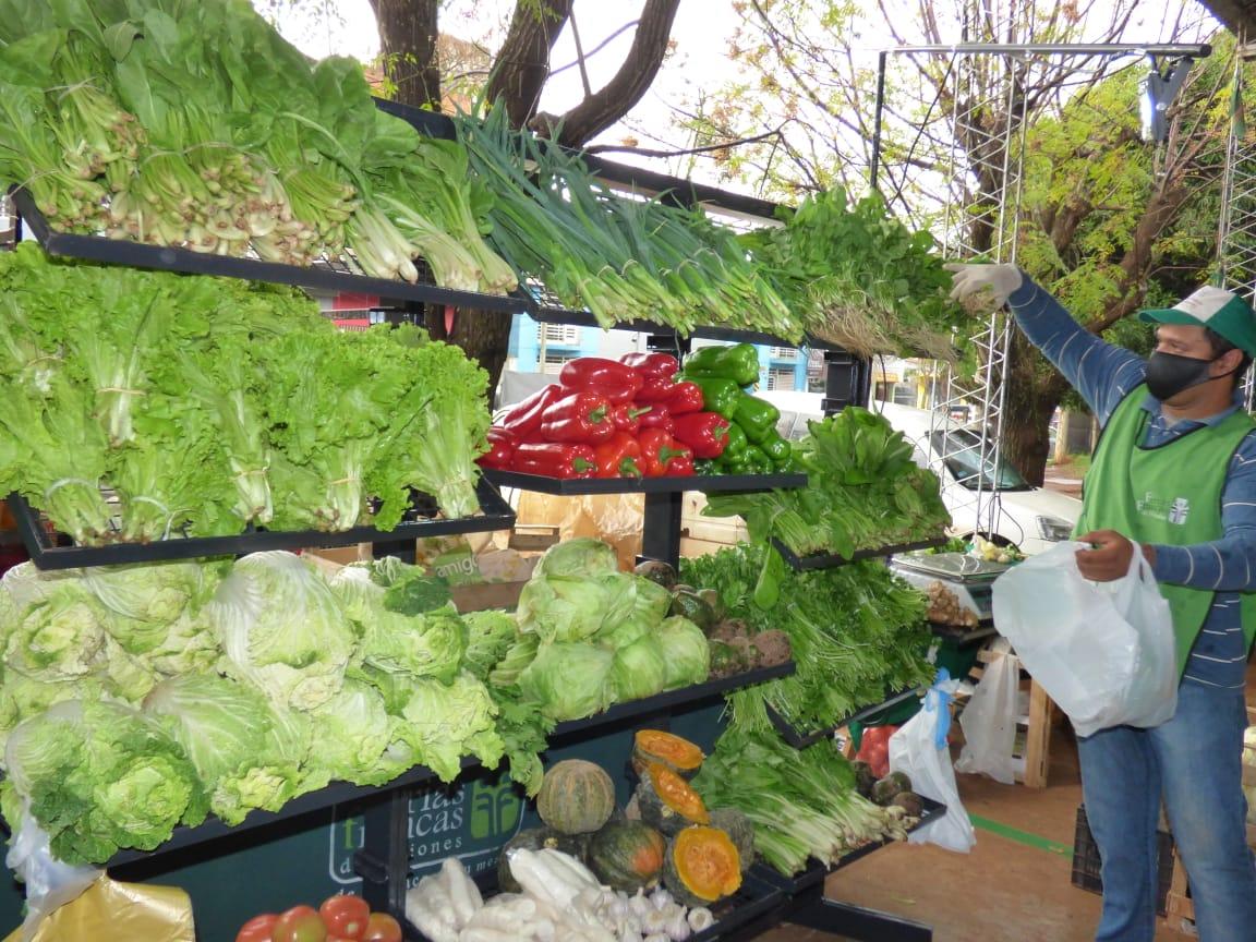 Posadas: Ferias Francas, desarrollo local de la mano de la economía popular