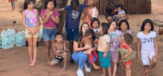 Incendios en Misiones: más comercios de Posadas se suman a la colecta solidaria para recaudar ayuda para los bomberos y afectados por el fuego