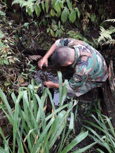 Incendios en Misiones: conocé el testimonio de un voluntario que participó combatiendo los incendios en la Biósfera Yabotí