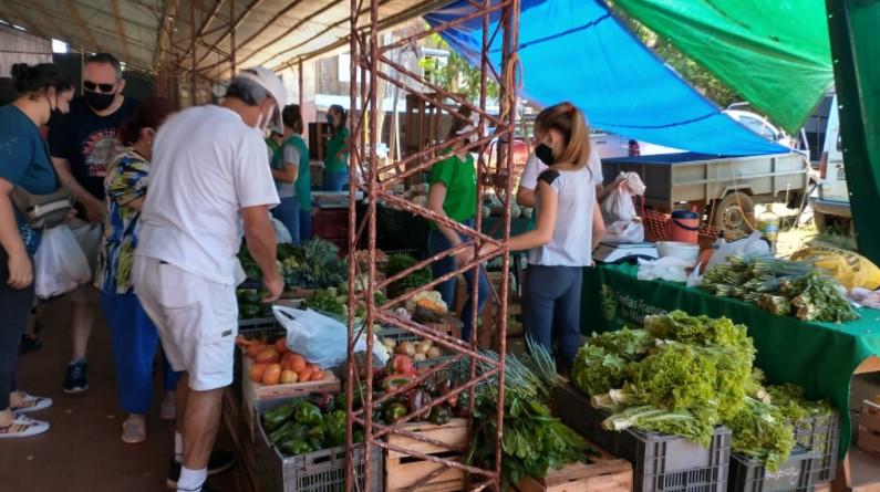 Ferias Francas: colonos misioneros atraviesan una merma en la producción por sequía y resaltan un incremento en la venta de lechones