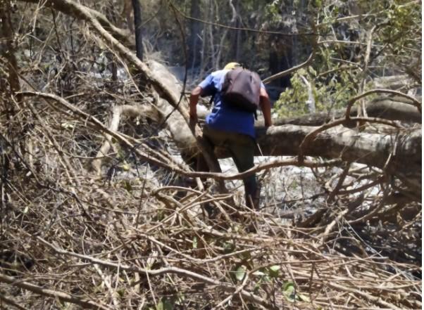 Avanza rápidamente el incendio en Aristóbulo del Valle y la comunidad de Ka'a Kupé es una de las afectadas en Misiones