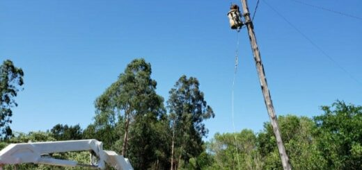 Energía de Misiones desarrolló trabajos en Bernardo de Irigoyen, Campo Grande y Campo Viera