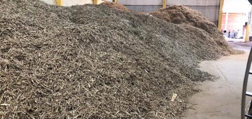 El INYM intervino 25 mil kilos de palitos de yerba mate en Apóstoles