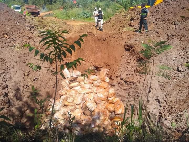 Pollos desenterrados en Puerto Iguazú: desde Senasa confirman que la mercadería estaba en mal estado y enterrarlas fue la mejor opción por el volumen de la carga