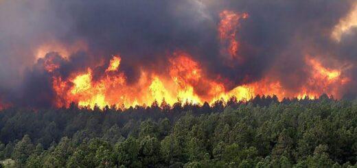 incendios en Misiones