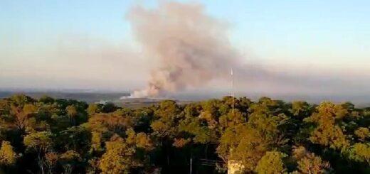 San Ignacio: un dantesco incendio de pinares y pastizales bordeaban ambas márgenes del arroyo Yabebirí por Ruta 12