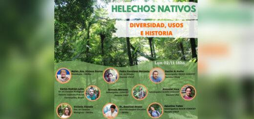 El Instituto Misionero de Biodiversidad llevará a cabo un Webinar sobre helechos nativos de la provincia