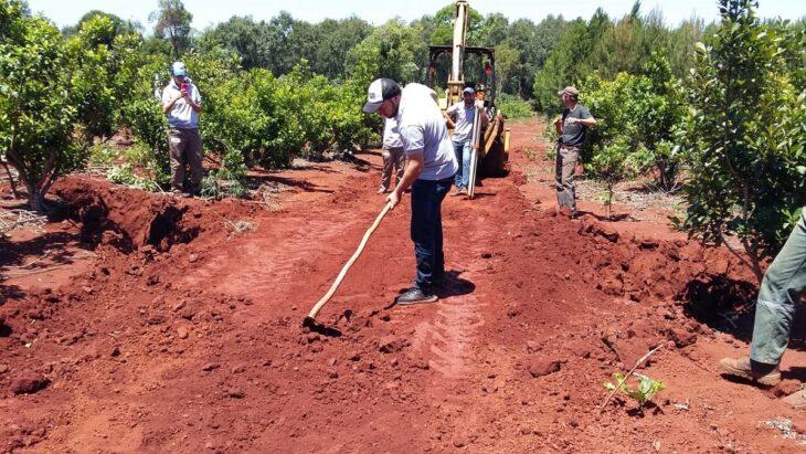 Capacitación para frenar la erosión y devolver productividad al yerbal