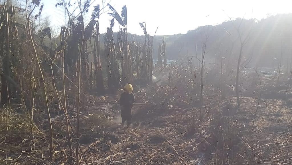 Iguazú: Bomberos Voluntarios lograron salvar unas 20 cabañas en un incendio forestal