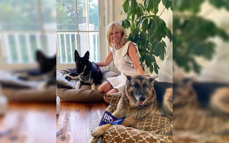 Joe Biden rescató a un perro