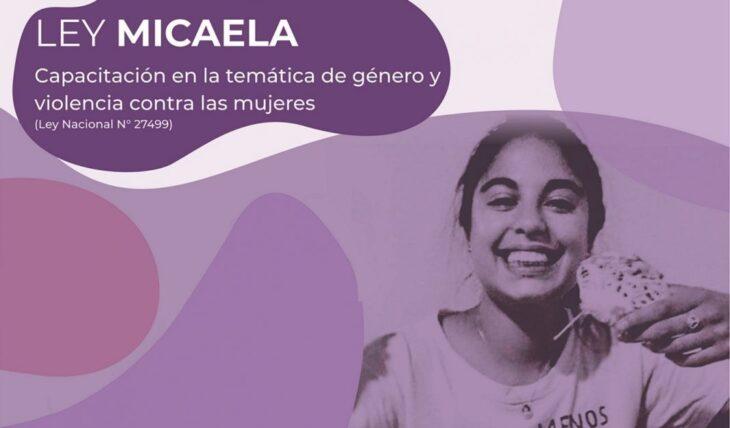 Ley Micaela: realizan capacitaciones para erradicar la violencia contra la mujer en Misiones