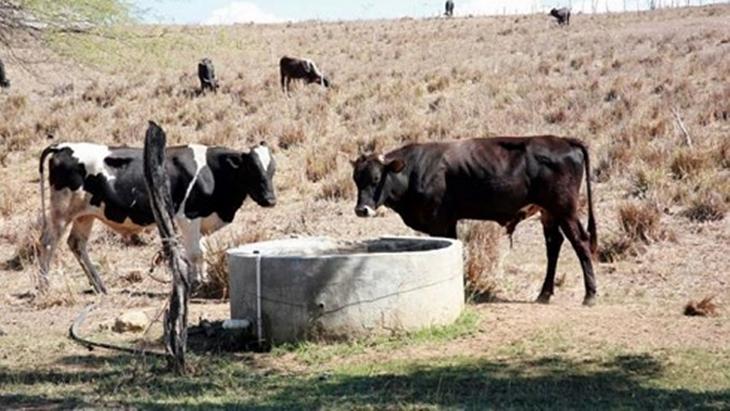 """Sequía en Misiones: """"Debemos evaluar las pérdidas antes de declarar al sector agropecuario en emergencia"""", afirmó Oriozabala"""