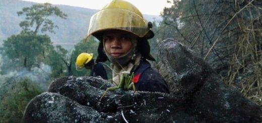 Bomberos Voluntarios de Iguazú colaboraron en un incendio forestal en El Soberbio