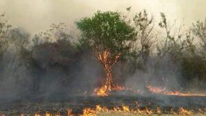 """COIFORM: """"Los incendios forestales y rurales se producen principalmente por actitudes negligentes y desaprensivas"""""""