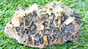 piedra hallada en una chacra