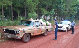 Sorprendieron a cinco hombres robando yerba mate de una chacra en Garuhapé
