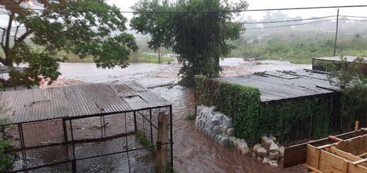 Tormenta en Posadas: vecinos de la Chacra 122 volvieron a sufrir inundaciones y denuncian que es por la basura que las personas arrojan en ese lugar