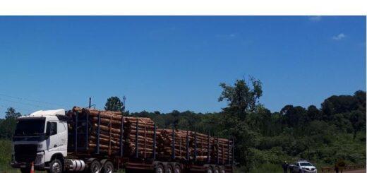 Una motociclista murió en Misiones tras choque con un camión cargado con madera