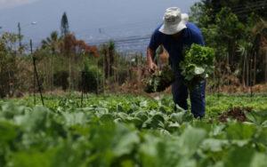 Costa Rica: descarbonizar la economía brindaría beneficios al país calculados en $41.000 millones