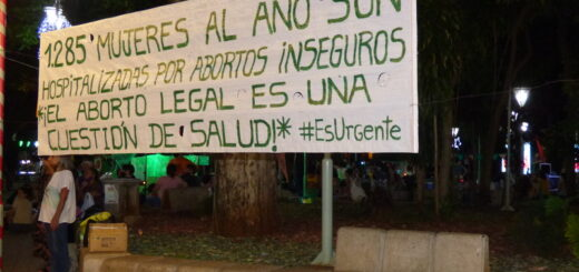 """Proyecto de ley Interrupción Voluntaria del Embarazo: """"Con una media sanción no nos conformamos"""", opinó la posadeña Florencia Bueno"""