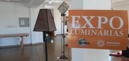 expo luminarias