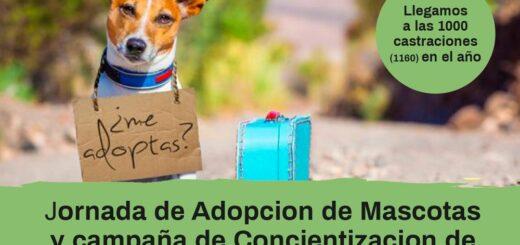 Montecarlo: día de adopción y concientización sobre la tenencia responsable de mascotas