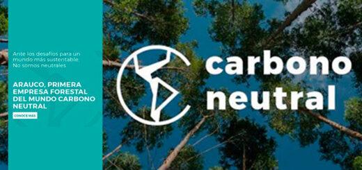ARAUCO se convierte en la primera empresa forestal del mundo en ser carbono neutral