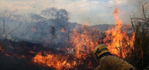 """El ministro de Ecología valoró que los ciudadanos """"asumieron el compromiso social"""" y comenzaron a denunciar las quemas ilegales"""