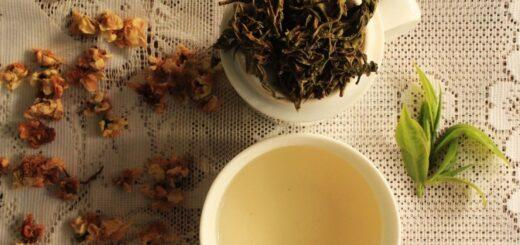 Se desarrolla desde ayer en Misiones la ronda de negociosdel té gourmet y continúa hasta mañana