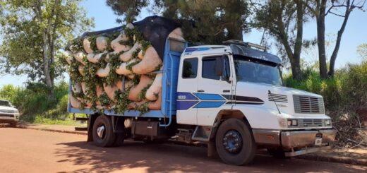 Controles del INYM en ruta: secuestraron un camión que transportaba 109 raídos de hoja verde de yerba mate