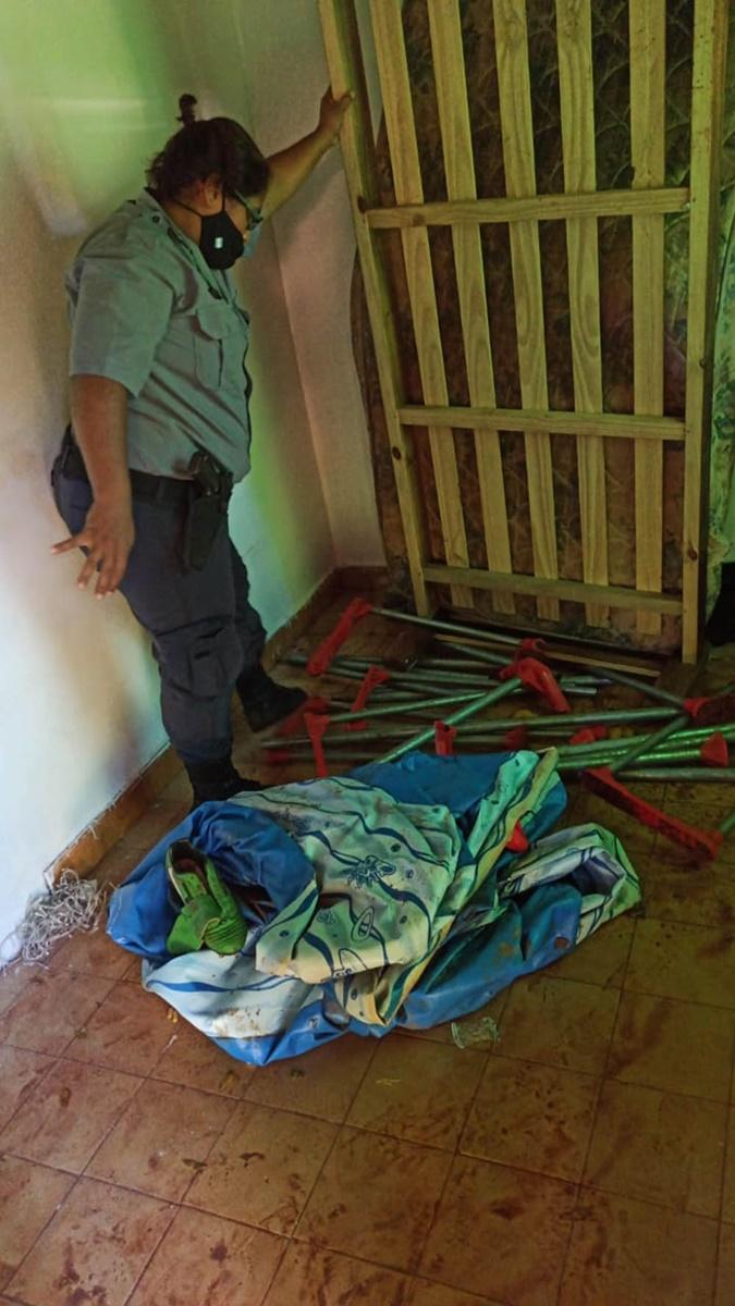En medio de la ola de calor que azota a la provincia, apareció un ladrón de pelopinchos en Oberá