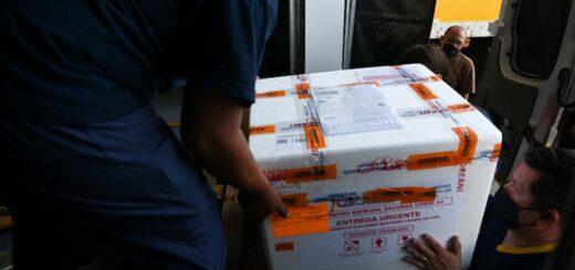 Llegaron 2500 vacunas Sputnik del componente 2 a Misiones